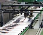 Druck-und-Papierindustrie